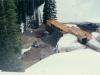 1989-coal-property-bc-5